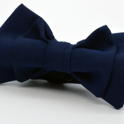 Dark Blue Double Butterfly Boy's Bow Tie