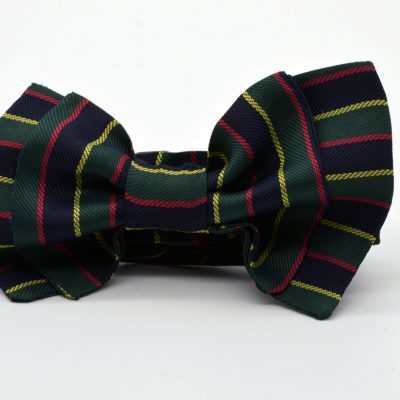Dark Green Dark Blue Striped  Double Butterfly Boy's Bow Tie