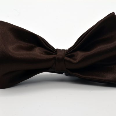 Brown Butterfly with a Twist Bow Tie